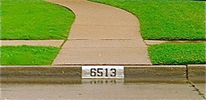 Curb Painting Curb Number Pro